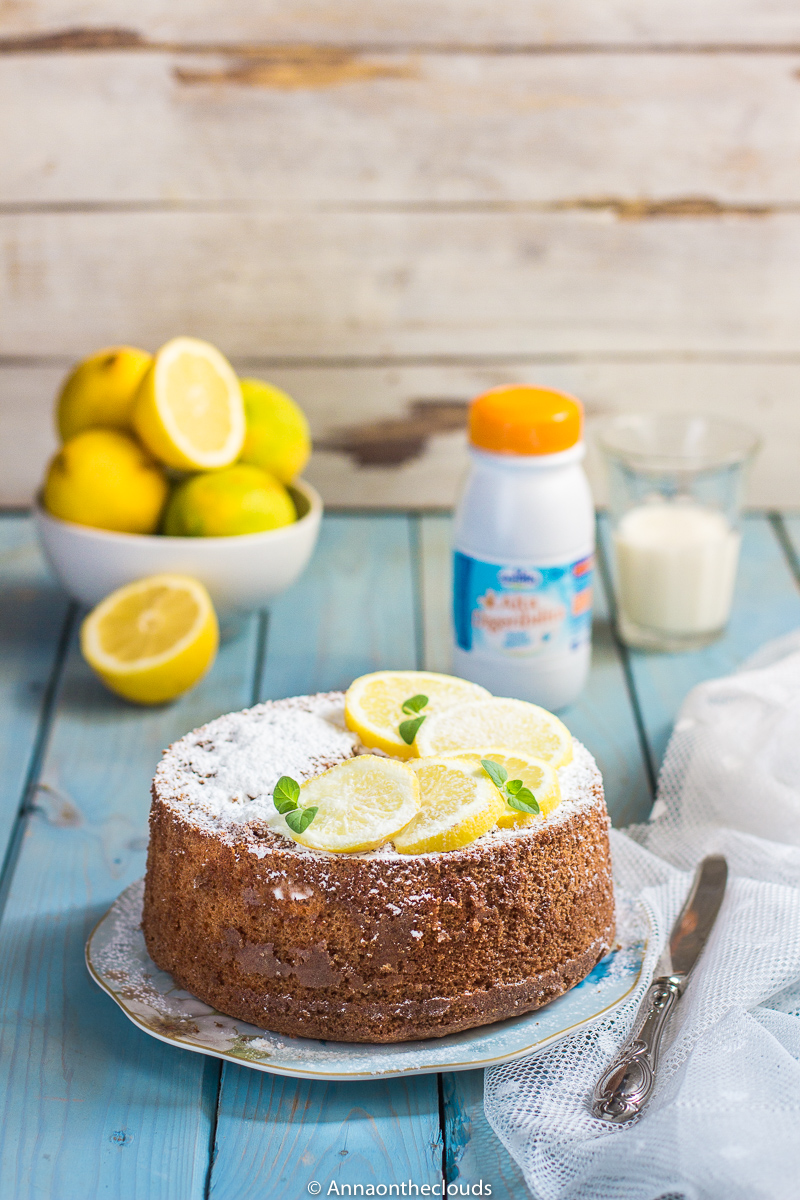 Chiffon cake al limone: ricetta senza lattosio, alta e soffice