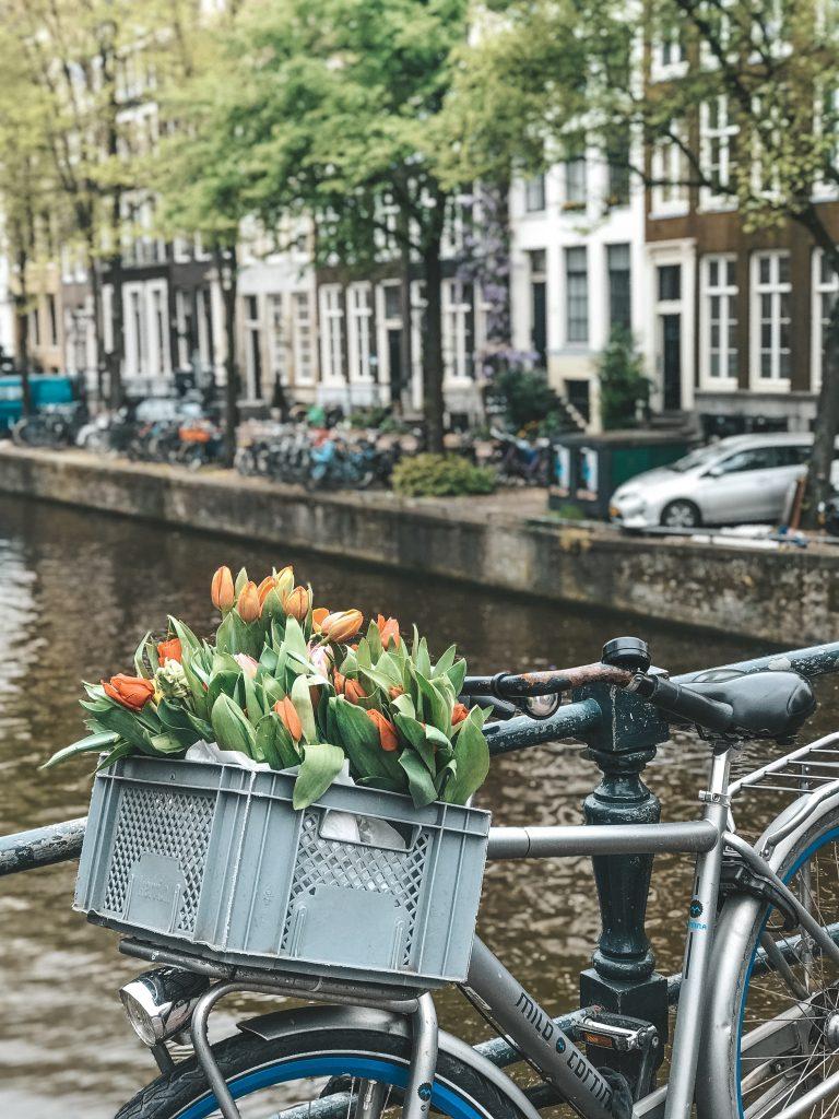 Cosa fare e vedere ad Amsterdam (compresi i tulipani)